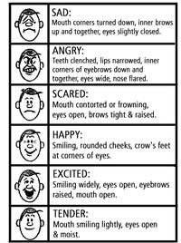 Faces_of_emotions_05dec23_v3_copy